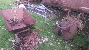 The hens will be moving into the wheelbarrow graveyard