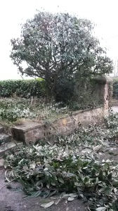 An hour and a half later..