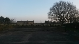 Better viewing for the cattle