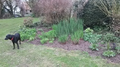 Ella poses in front of tidied Silver Wedding bed