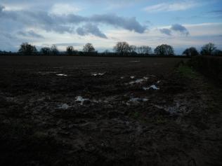 Sodden fields